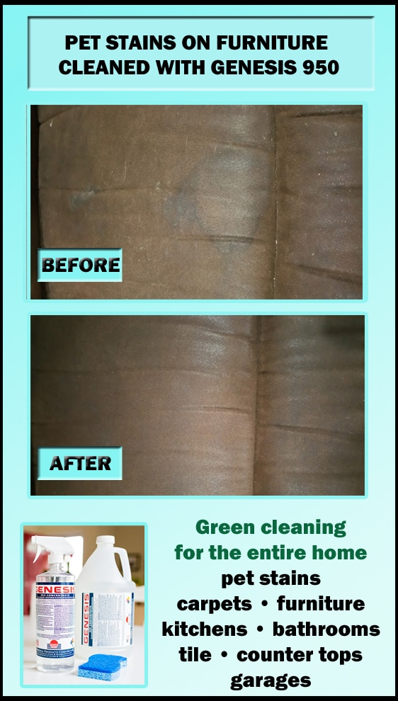 Best Stain Remover - Genesis 950 - Green Cleaning For The Entire Home